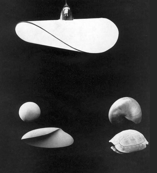 folkwangschule-wechselspiel-zwischen-natur-und-kunstform-schlagheck-design-archiv-800w